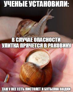 Мем про улитку
