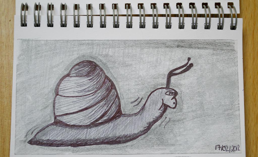 Рисунок улитки-гонщицы